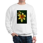 daylily daydreams v.3 Sweatshirt