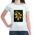 daylily daydreams v.3 Jr. Ringer T-Shirt