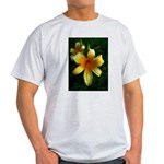 daylily daydreams v.3 Light T-Shirt