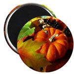 .elements of autumn. Magnet