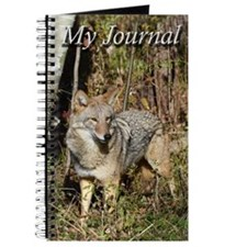 Eastern Coyote Journal