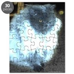 Exotic Persian Cat Puzzle