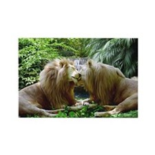 Affectionate Lions Rectangle Magnet