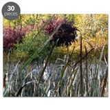 Fall Colors and Cattails Puzzle