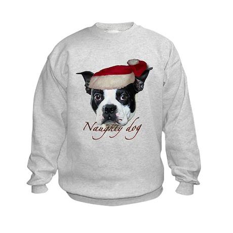 Naughty Dog Kids Sweatshirt