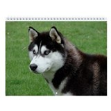 2013 Horizontal Siberian Husky Wall Calendar