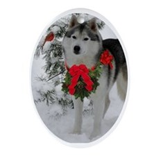 Siberian Husky Christmas Ornament (Oval)