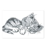 Sleeping Kitten Postcards (Package of 8)