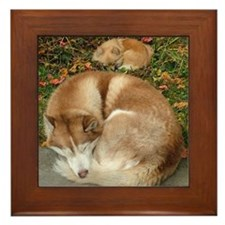 Siberian Husky & Pomeranian Framed Tile