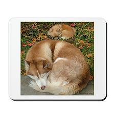Siberian Husky & Pomeranian Mousepad