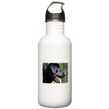 Black Labrador Water Bottle