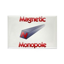 Monopole Rectangle Magnet (10 pack)