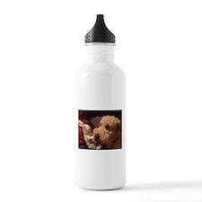 wheaton 1 Water Bottle