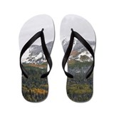 Fall Snow Flip Flops