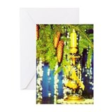 Festive Candle Greeting Cards (Pk of 10)