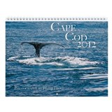 Peter Hunt's Cape Cod 2013