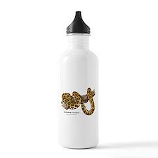 Burmese Python Water Bottle