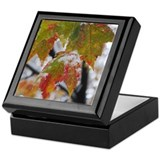Keepsake Box - Frozen maple