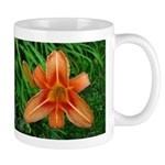 .orange daylily. Mug