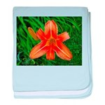 .orange daylily. baby blanket