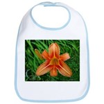 .orange daylily. Bib