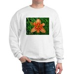 .orange daylily. Sweatshirt