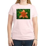.orange daylily. Women's Light T-Shirt