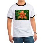 .orange daylily. Ringer T