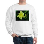 .pale yellow. Sweatshirt