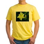 .pale yellow. Yellow T-Shirt