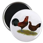 "Old English Pheasant Fowl 2.25"" Magnet (10 pa"