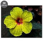 .yellow hibiscus. Puzzle