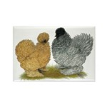 Sizzle Chickens Rectangle Magnet (100 pack)