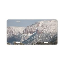 Snow Aluminum License Plate