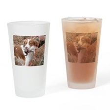 Cute Brittany spaniel Drinking Glass