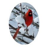 Snow Cardinal Ornament (Oval)