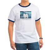 Samoyed and Northern Lights T