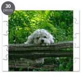 Coton De Tulear Puzzle