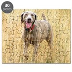 The Great Dane Puzzle