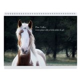2013 Gypsy Vanner Wall Calendar