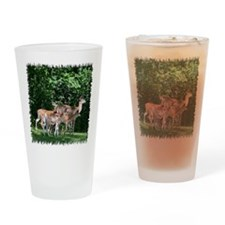 Doe and triplets Drinking Glass