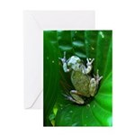 treefrog I Greeting Card