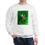 treefrog I Sweatshirt