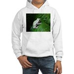 treefrog III Hooded Sweatshirt