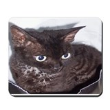 Surprise Mousepad