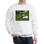 .the boys. Sweatshirt