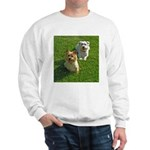 .the boys. II Sweatshirt