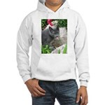 .sarcasti-cat. Hooded Sweatshirt
