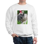 .sarcasti-cat. Sweatshirt