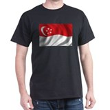 Flag of Singapore T-Shirt